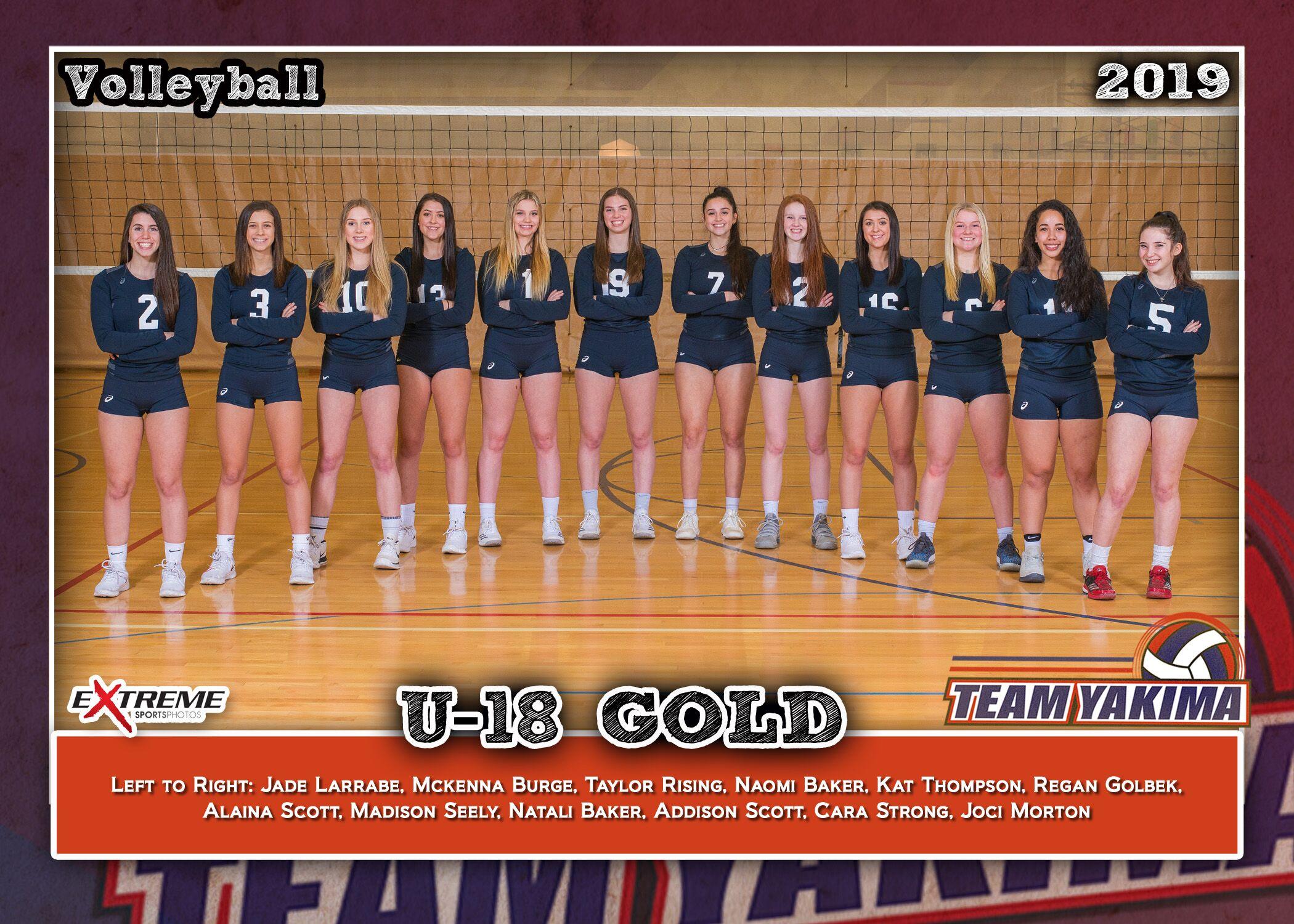 Team Yakima 18 Gold